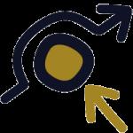 NLP Metaprogramme 6: Problemvermeidung / Zielorientierung