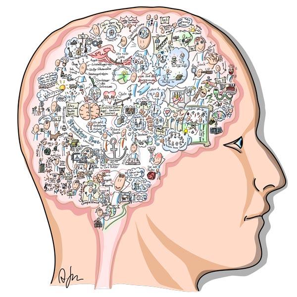 Gehirn eines NLP Master Practitioners